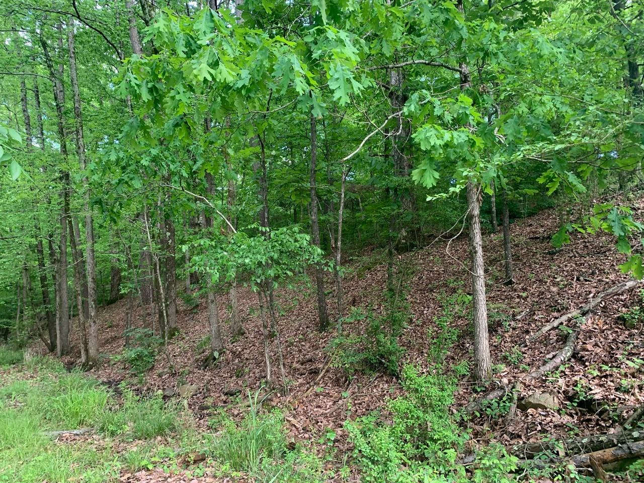 0 Parkview Drive Property Photo - Other, AR real estate listing