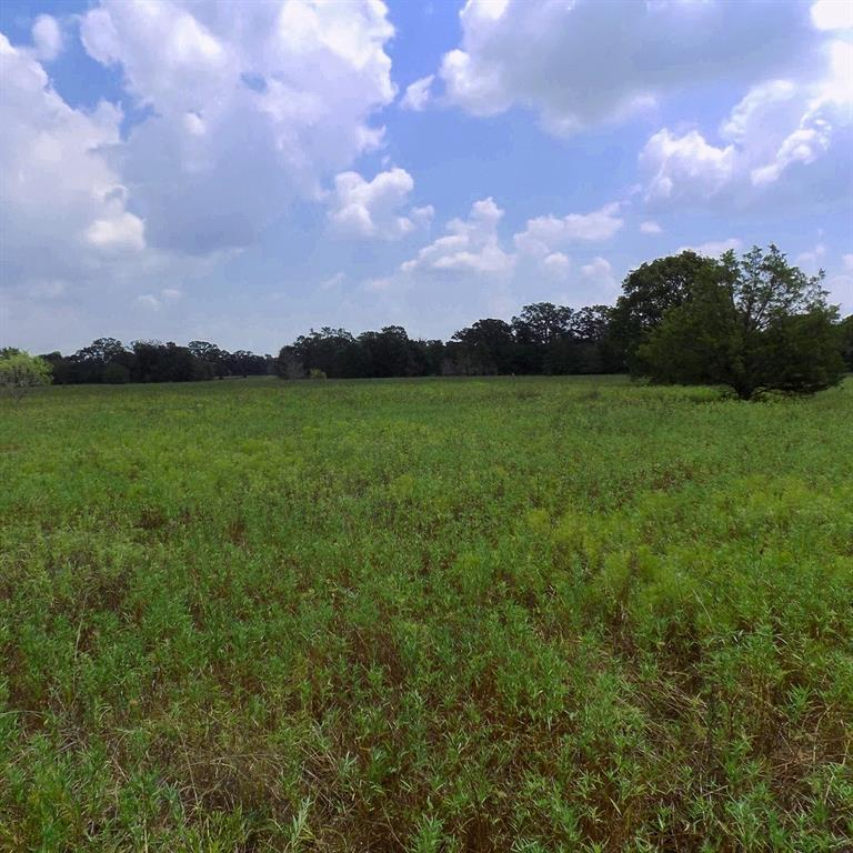 TBD River Oaks Drive, Iola, TX 77861 - Iola, TX real estate listing