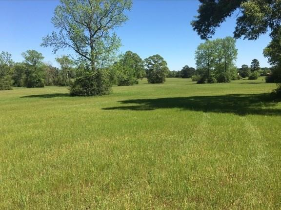 0 HWY 150 Behind Frontier Tr, Coldspring, TX 77364 - Coldspring, TX real estate listing