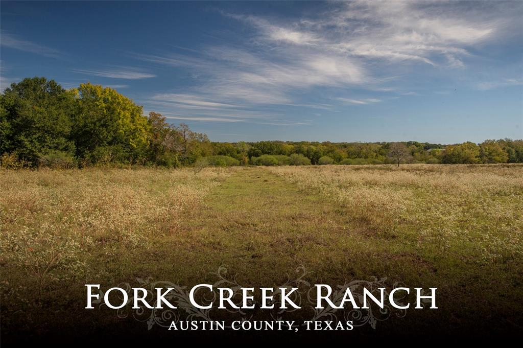 1400 Kiemsteadt Road, Chappell Hill, TX 77426 - Chappell Hill, TX real estate listing