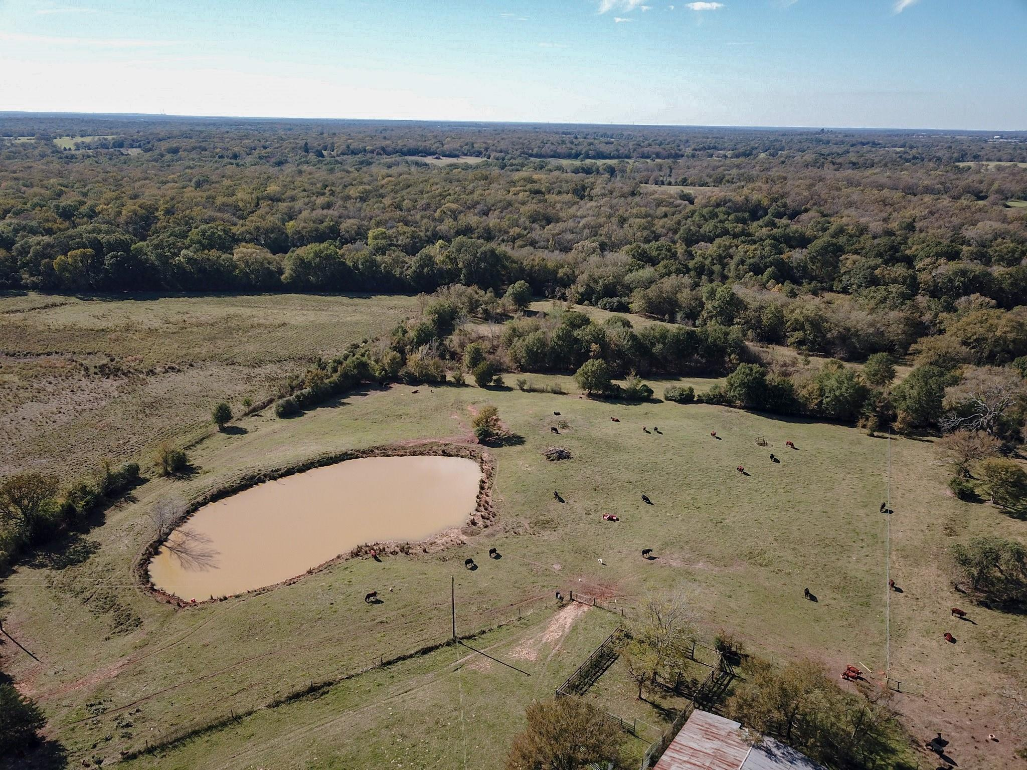 TBD County Road 348 Property Photo - Concord, TX real estate listing
