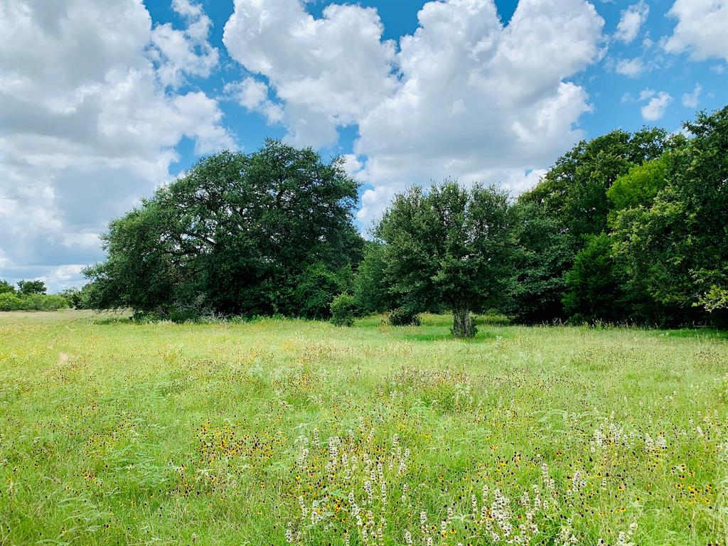 TBD County Road 213 Property Photo - Giddings, TX real estate listing