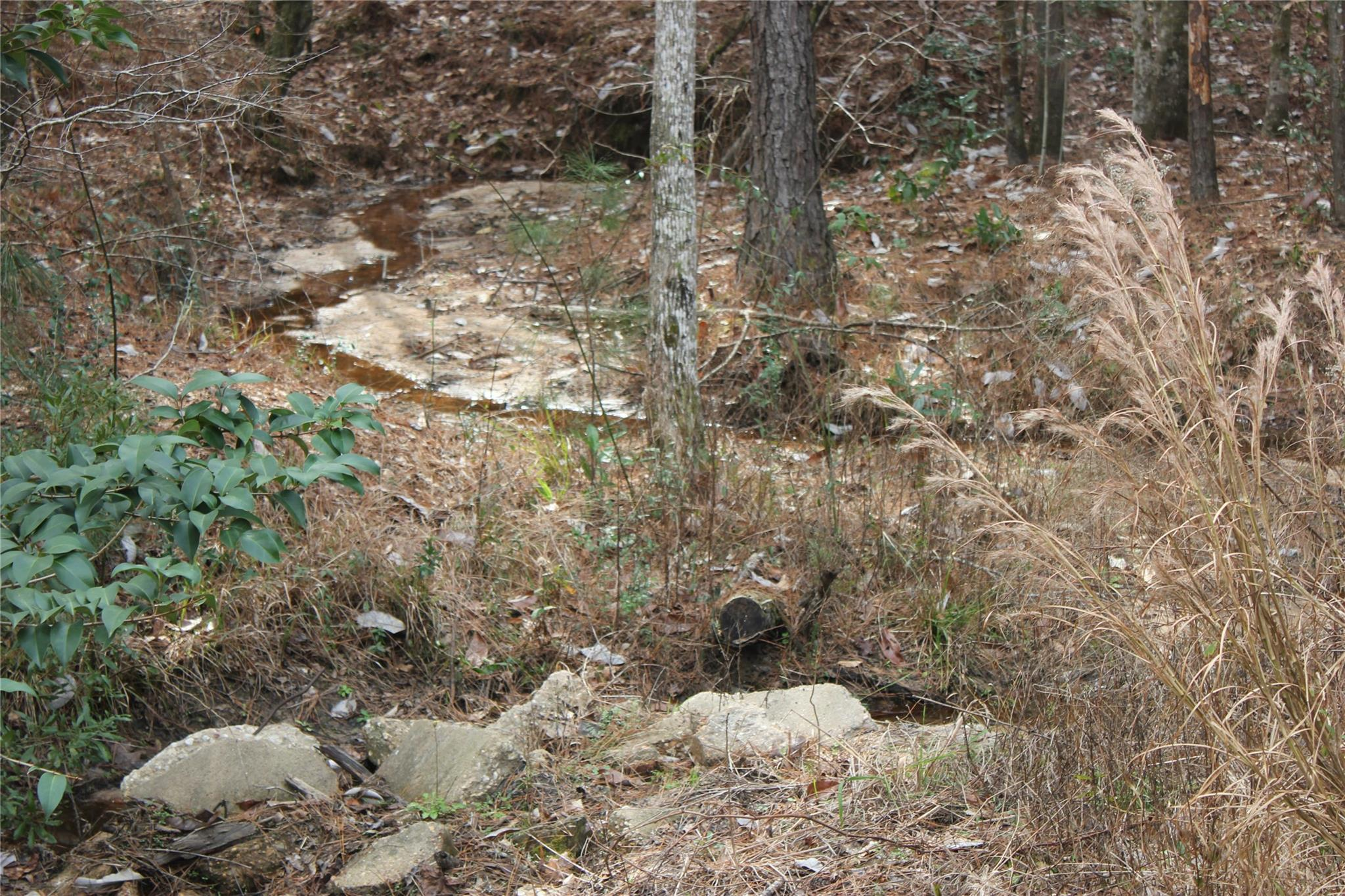 TBD Cross Creek 7 8 and 9 Trail Property Photo - Goodrich, TX real estate listing