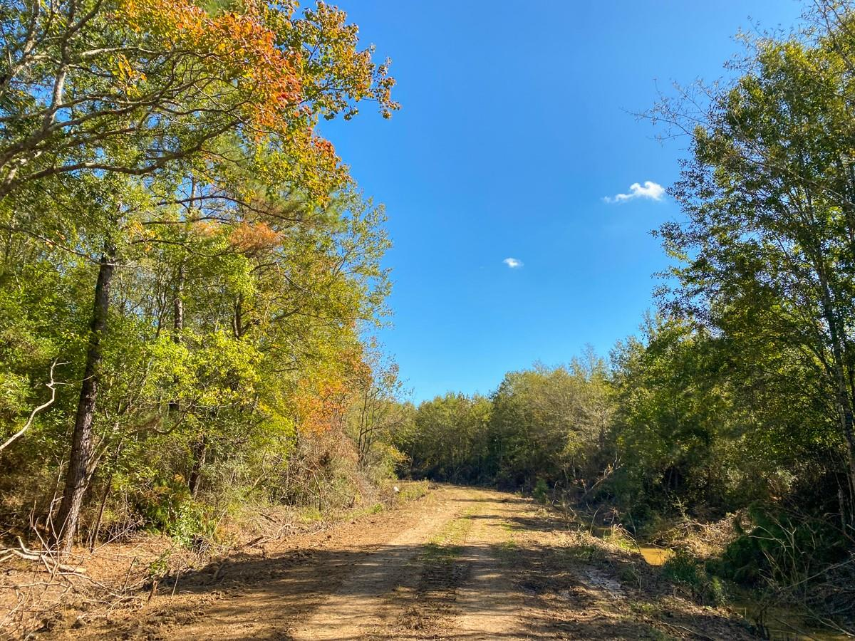 0 Gates Rd Property Photo - Devers, TX real estate listing