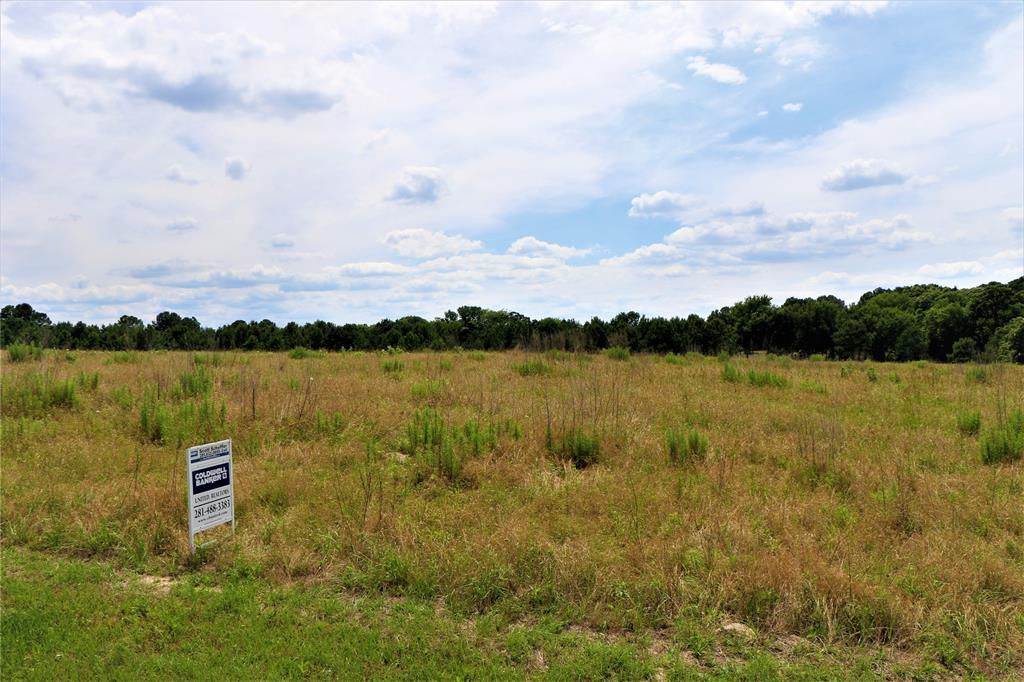 Lot 257 Waters Edge Drive Property Photo - Larue, TX real estate listing