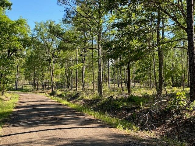 TBD CR 1233 Property Photo - Palestine, TX real estate listing