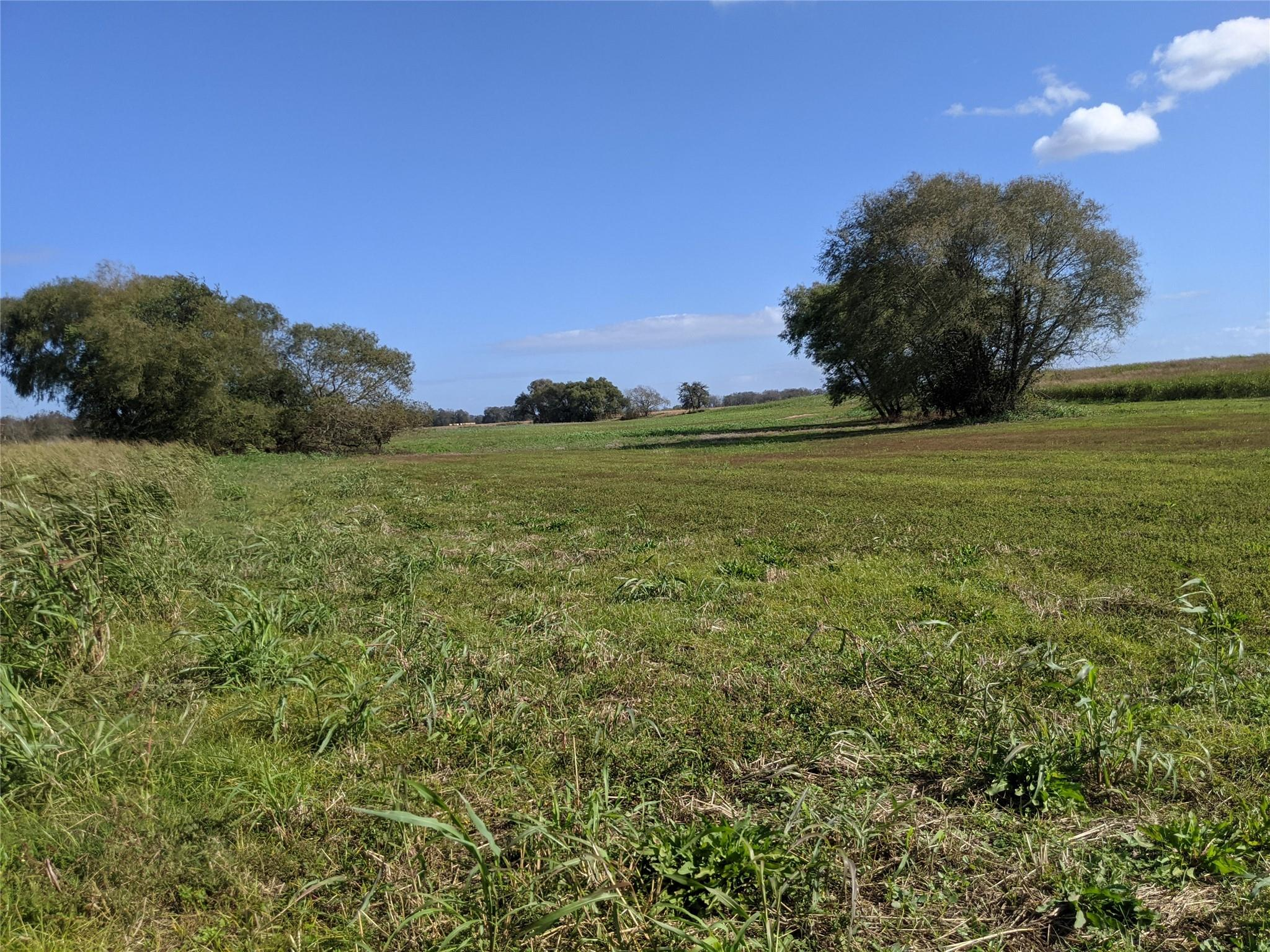 0000 County Road 267 Property Photo