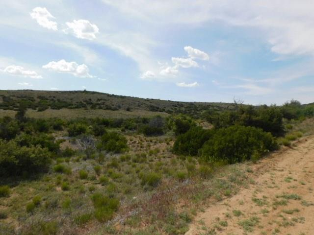 0 Ruger Ranch Property Photo
