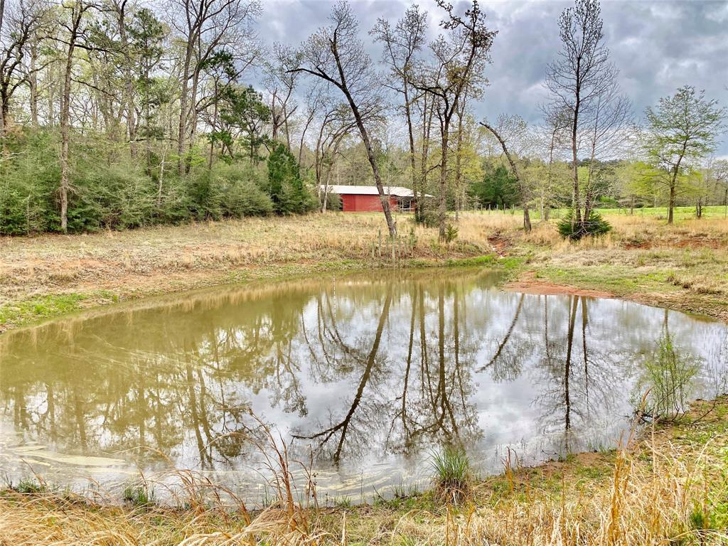 TBD County Rd 3240 Turner Road Property Photo - Colmesneil, TX real estate listing