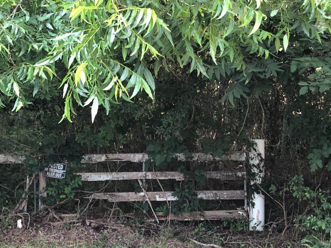 0 Denver Miller Road Property Photo - Sugar Land, TX real estate listing