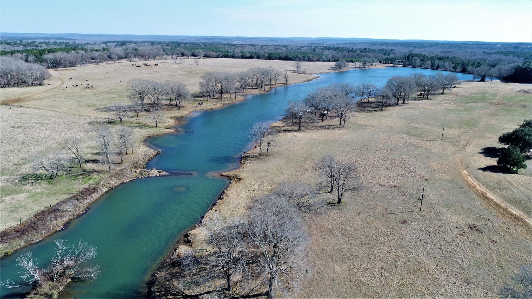 8456 FM 227 Property Photo - Grapeland, TX real estate listing