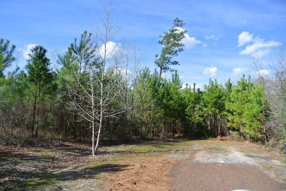250 Woodland Oak Drive Property Photo - Garrison, TX real estate listing
