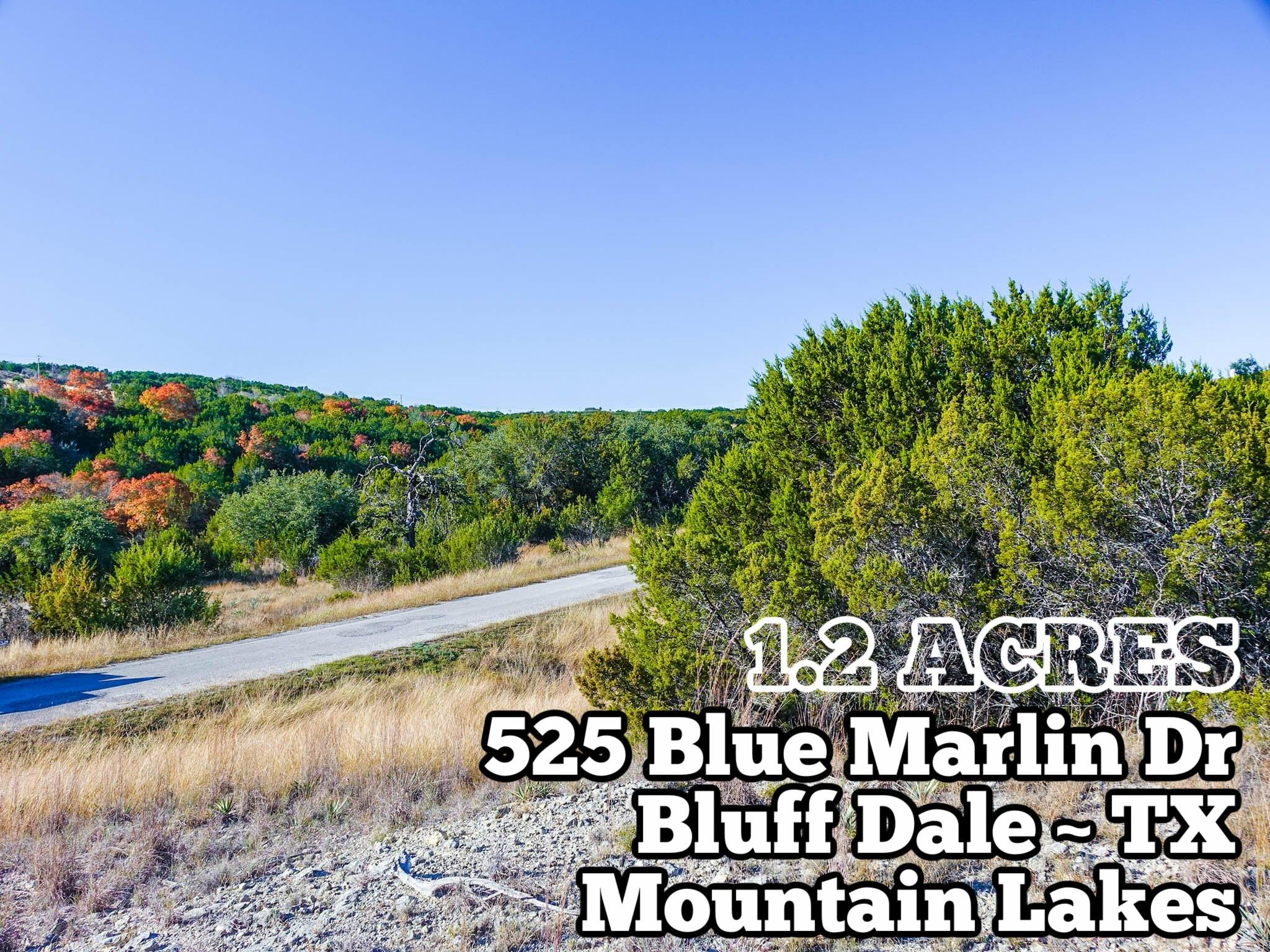 525 Blue Marlin Property Photo - Bluff Dale, TX real estate listing