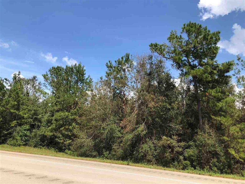 TBD Hwy 87 S Property Photo - Kirbyville, TX real estate listing