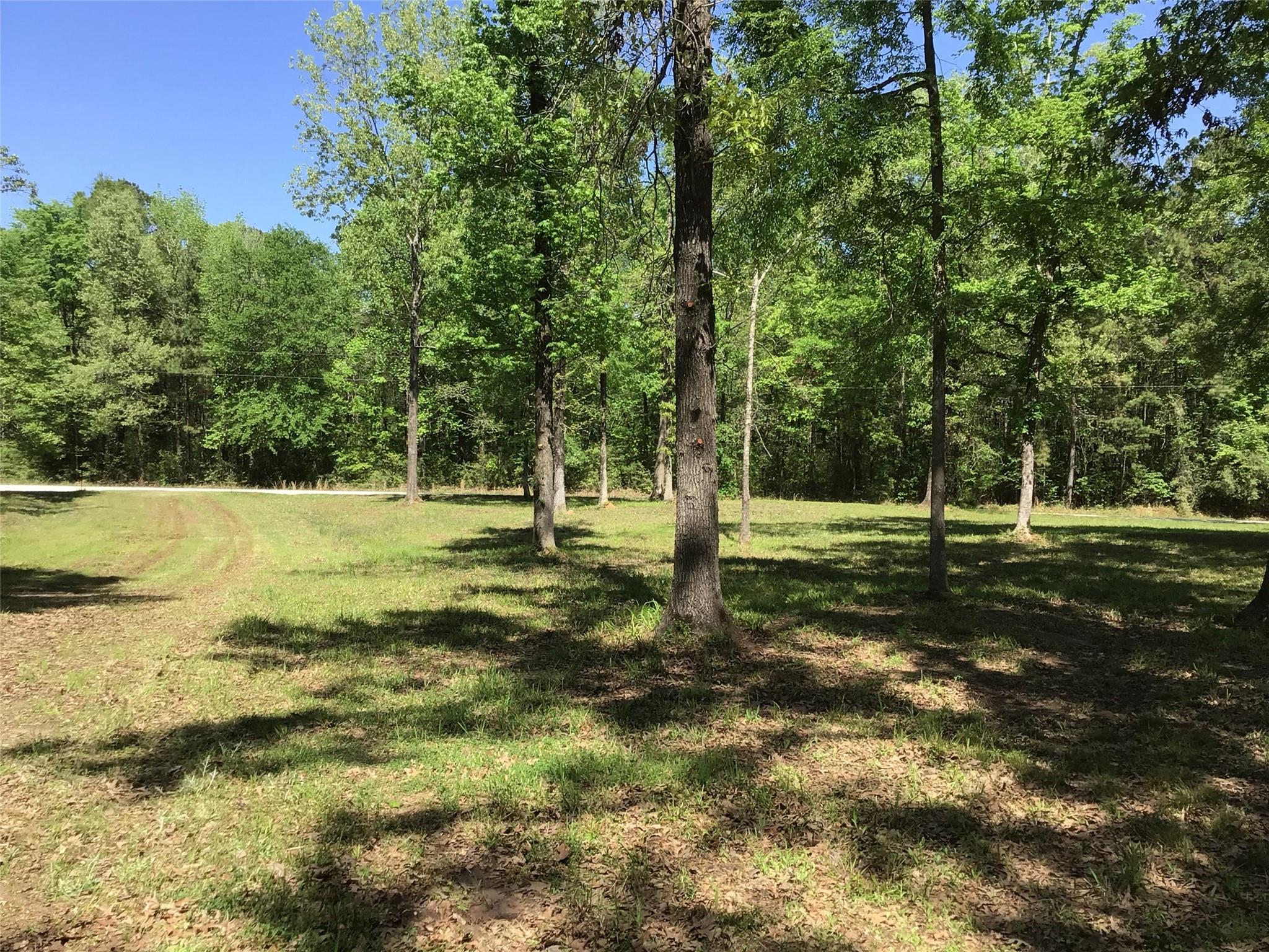 TBD CR 490 Property Photo - Broaddus, TX real estate listing