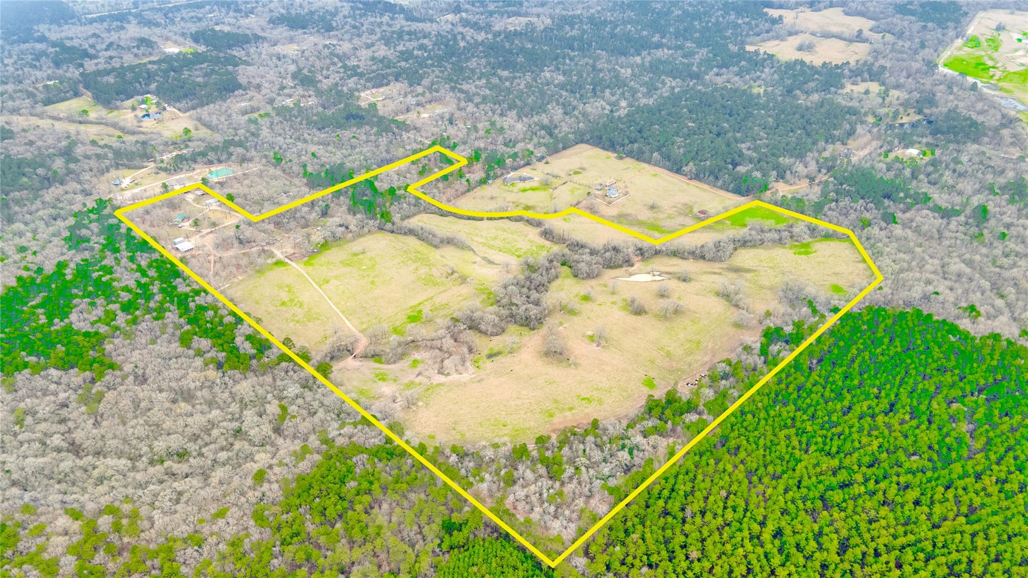 210 Western Court Property Photo - Coldspring, TX real estate listing