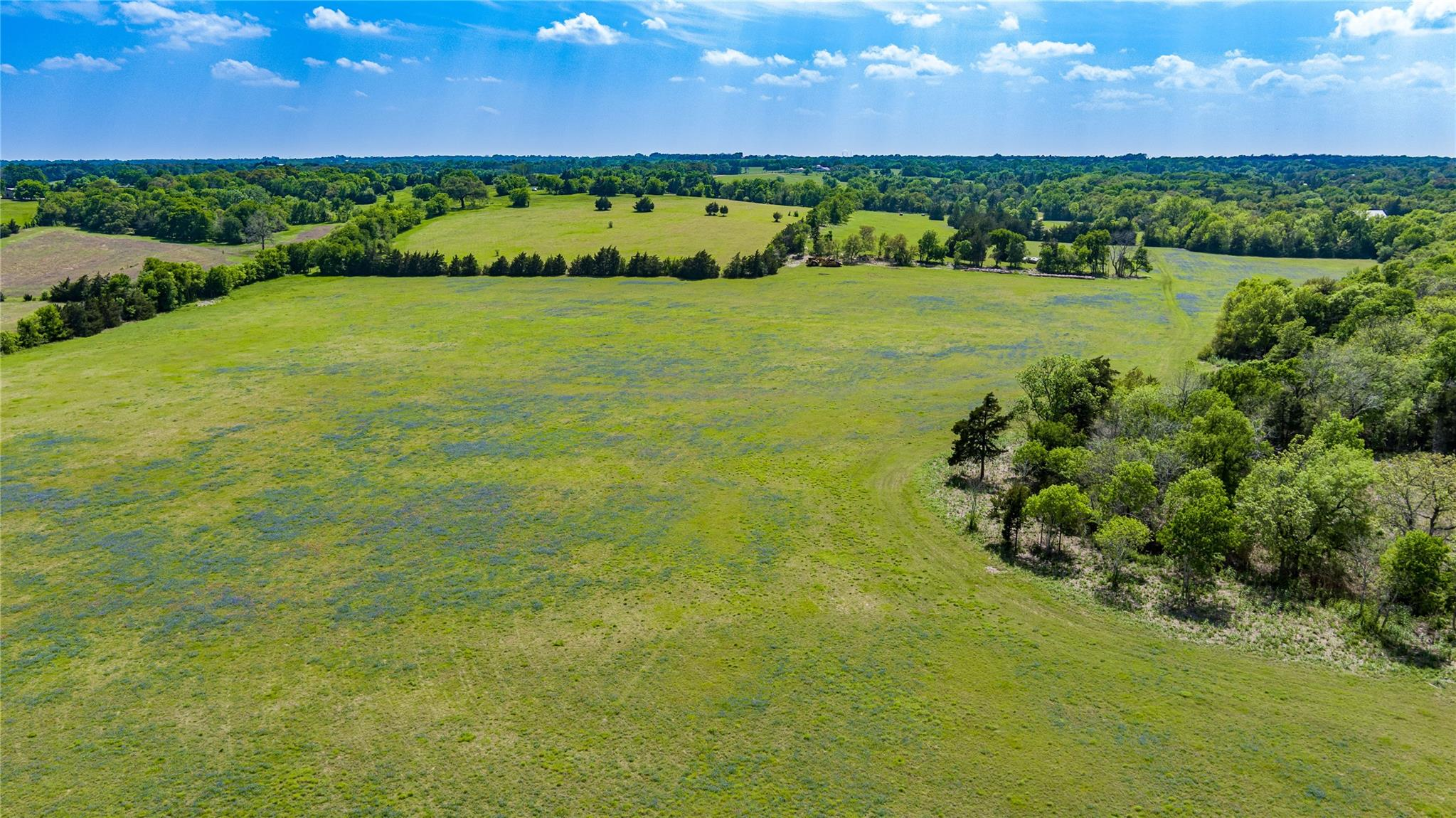 10450 Eckermann Road Property Photo - Burton, TX real estate listing