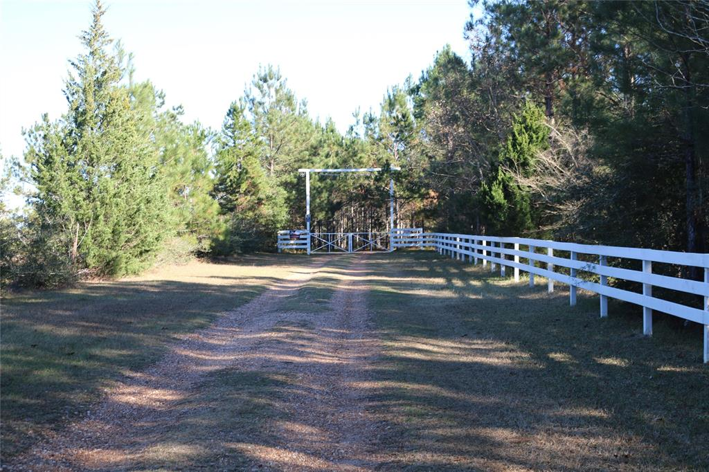 501 County Road 1096, Woodville, TX 75979 - Woodville, TX real estate listing