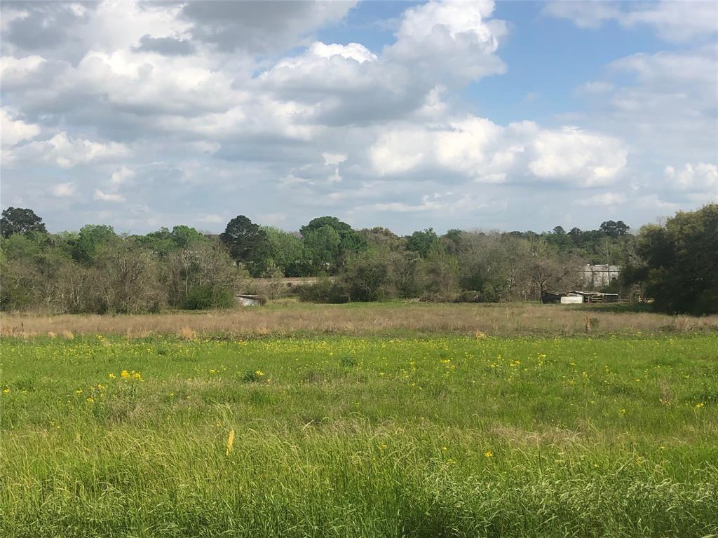 425 North Holland Street, Bellville, TX 77418 - Bellville, TX real estate listing