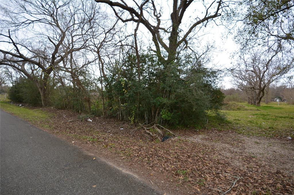 0 Weldon Road Road, Jones Creek, TX 77541 - Jones Creek, TX real estate listing