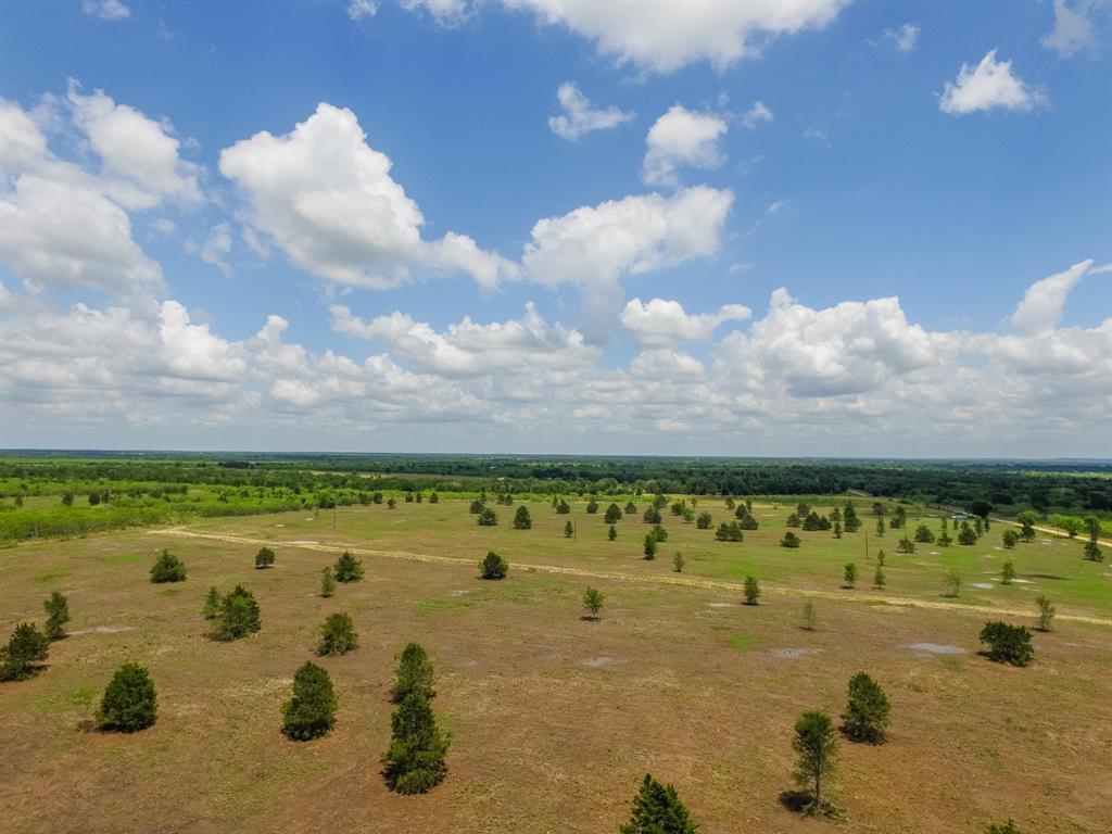 008 County Road 451 Property Photo - Waelder, TX real estate listing