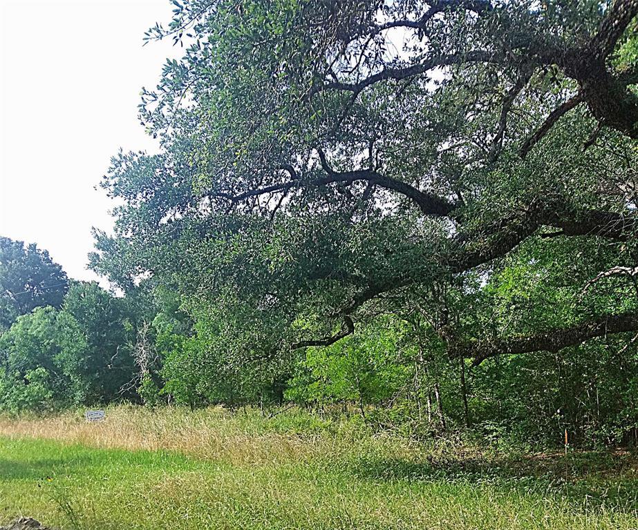 0000 Berry Creek, Somerville, TX 77836 - Somerville, TX real estate listing