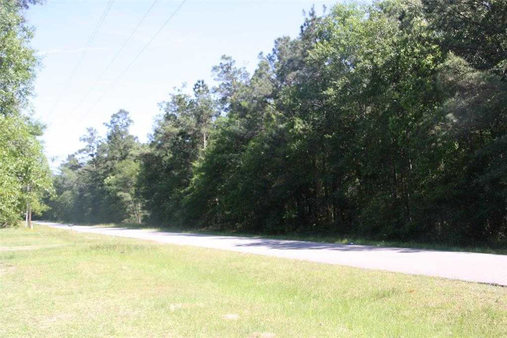 19902 Petty Walker Road Property Photo - New Caney, TX real estate listing