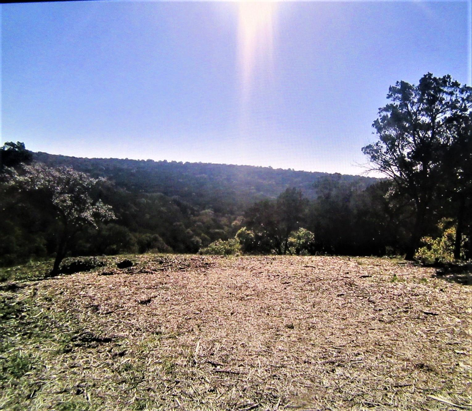3101 Wolf Creek Ranch Road Property Photo