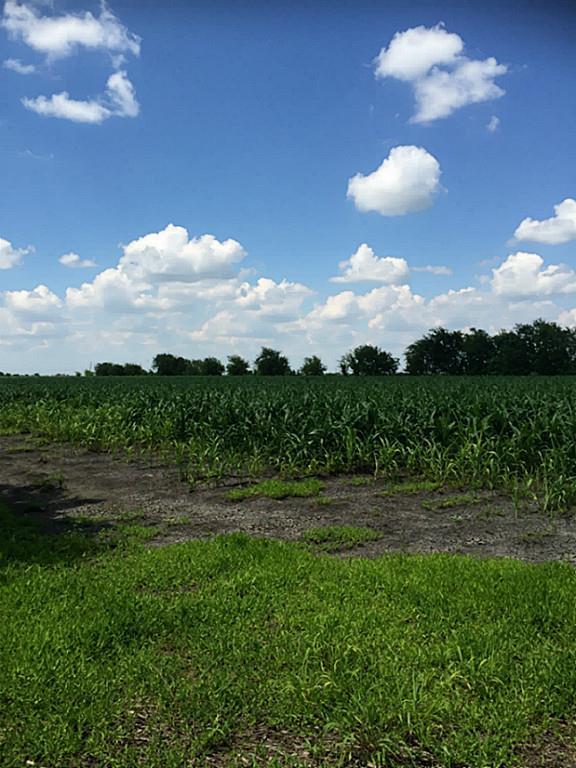 0 Fm 1162, El Campo, TX 77437 - El Campo, TX real estate listing
