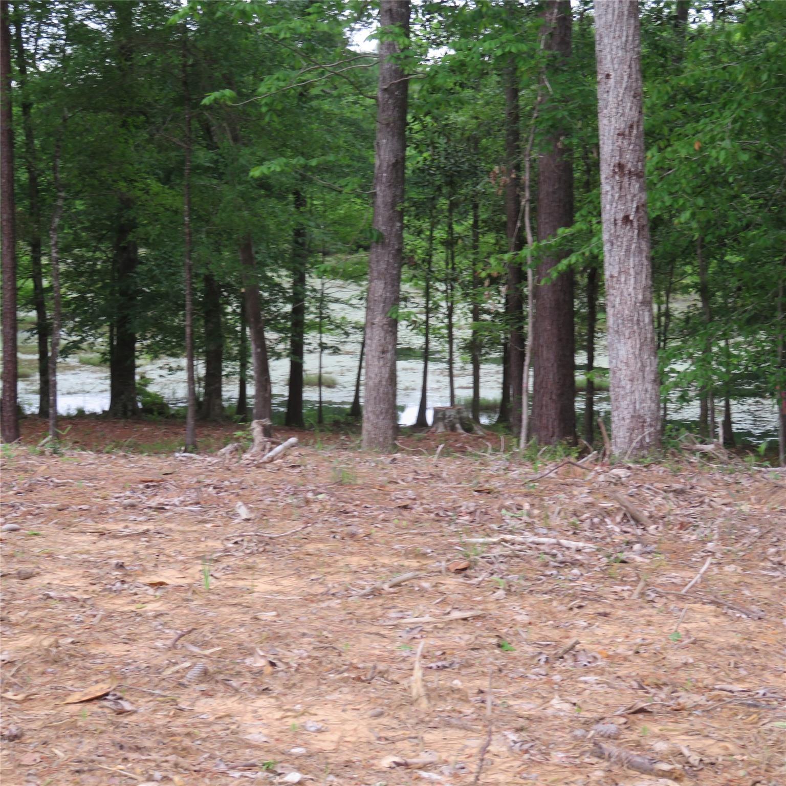 000 Lakewood Drive Property Photo