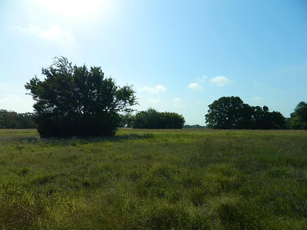 640 LCR 886, Jewett, TX 75846 - Jewett, TX real estate listing