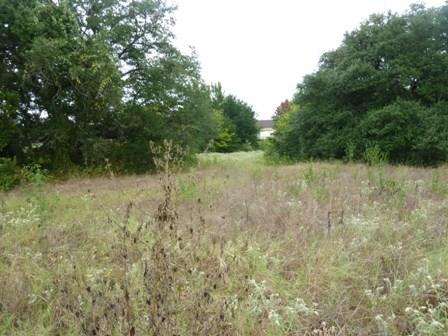TBD Wildflower, Teague, TX 75860 - Teague, TX real estate listing