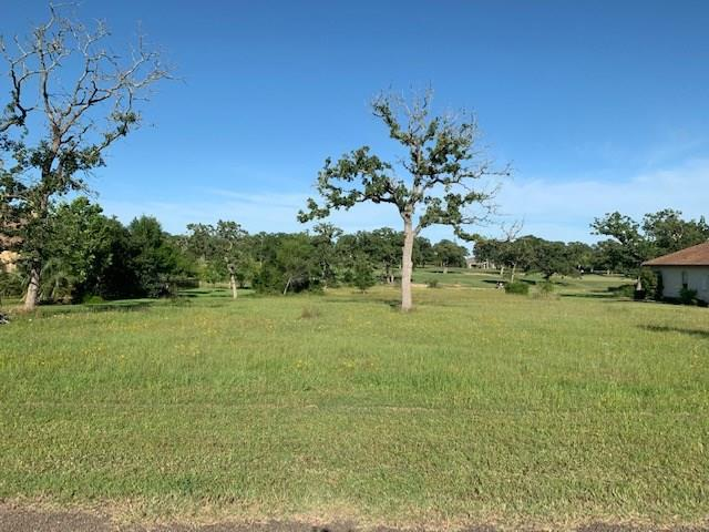 171 Riverwalk Lane Property Photo - Bastrop, TX real estate listing