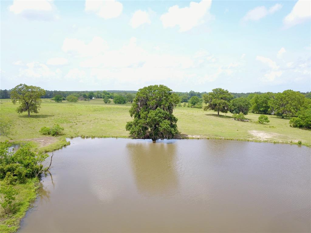 7650 FM 355 Property Photo - Trinity, TX real estate listing