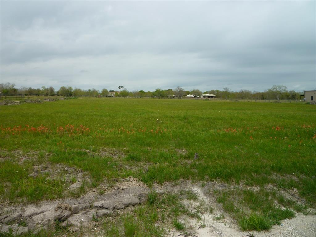 4417 Lawrence Road Property Photo - Beach City, TX real estate listing
