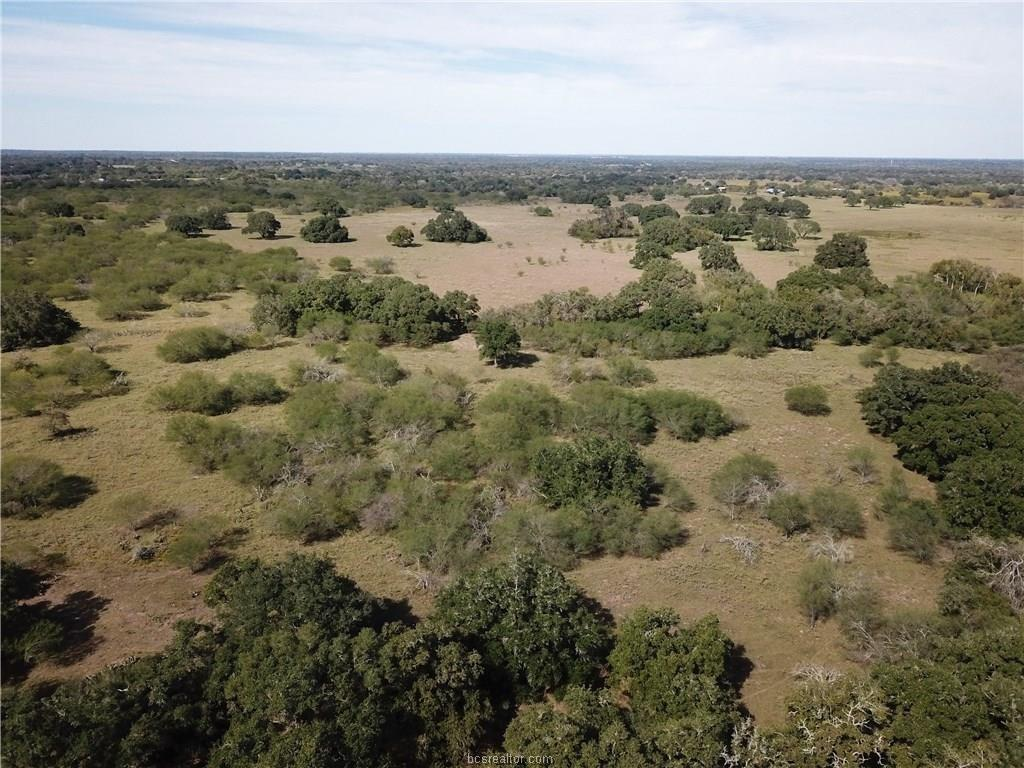 TBD Matthew Adams Road Property Photo - Yoakum, TX real estate listing