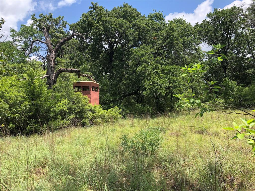 40 Acres Puckett Ranch Road Property Photo - Franklin, TX real estate listing