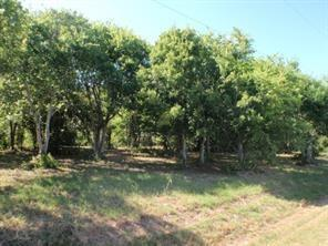 LOT 3 CR 297 Property Photo - Oyster Creek, TX real estate listing