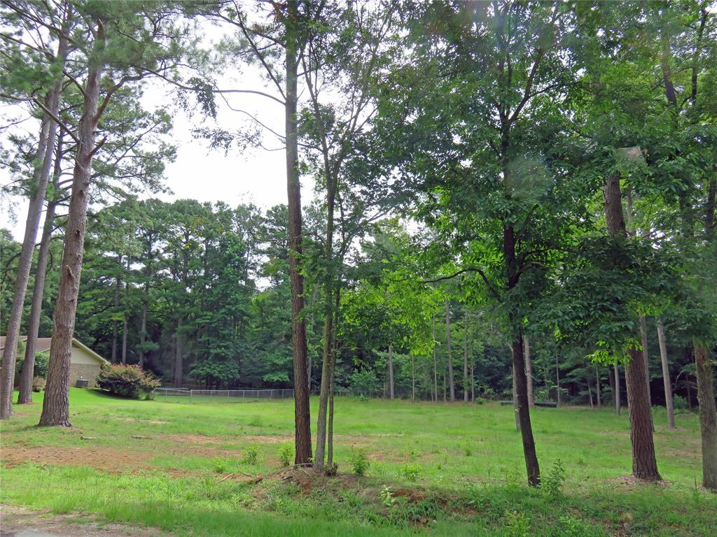 2704 Ventureview Street Property Photo - Palestine, TX real estate listing