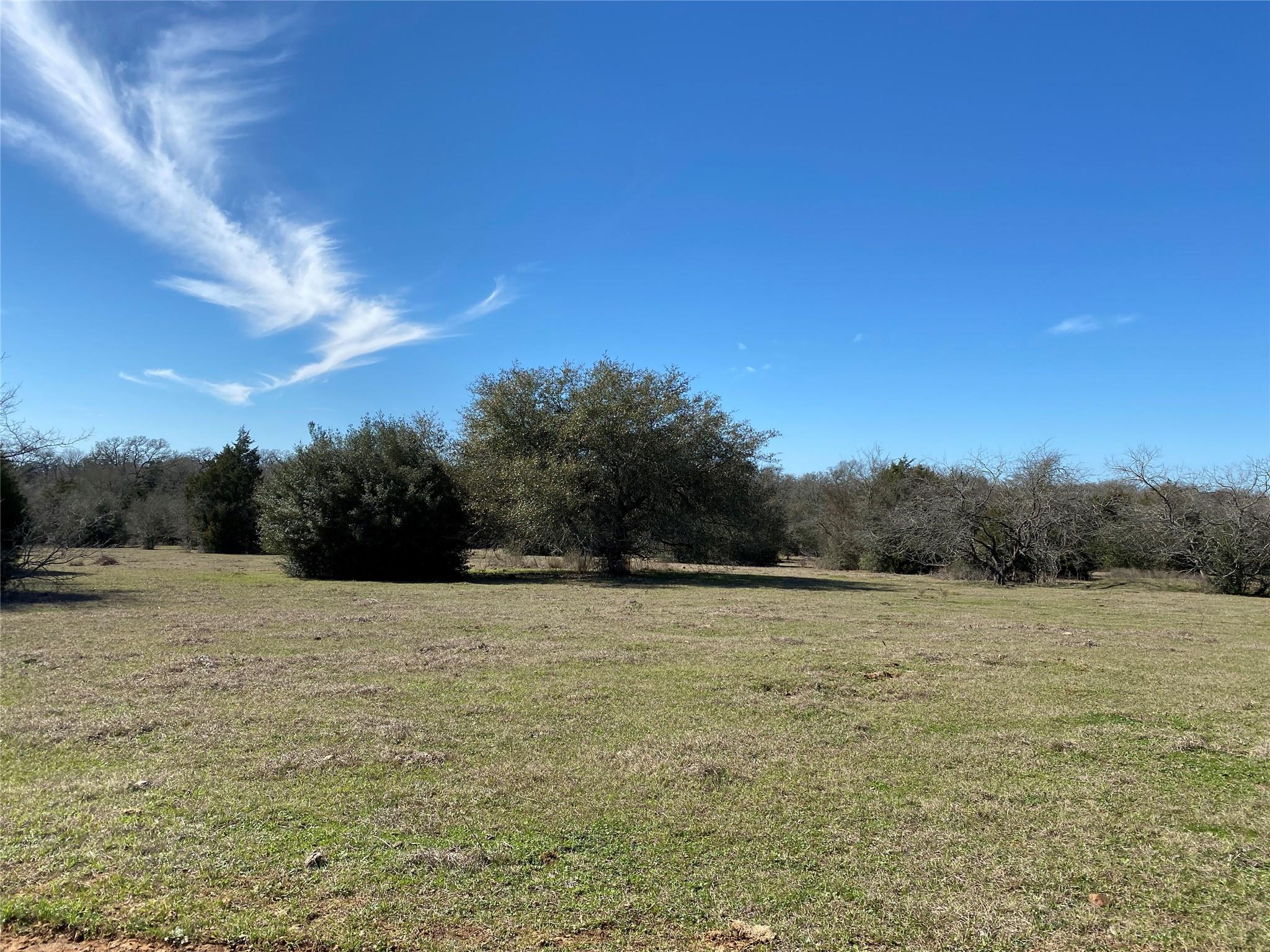 TBD County Road 439 Property Photo - Dime Box, TX real estate listing