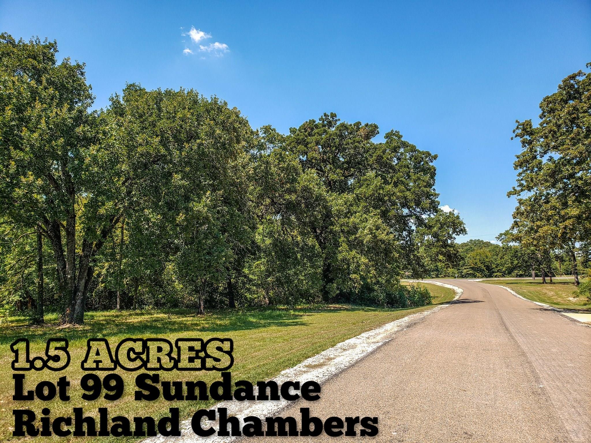 Lot 99 Sundance Property Photo - Corsicana, TX real estate listing
