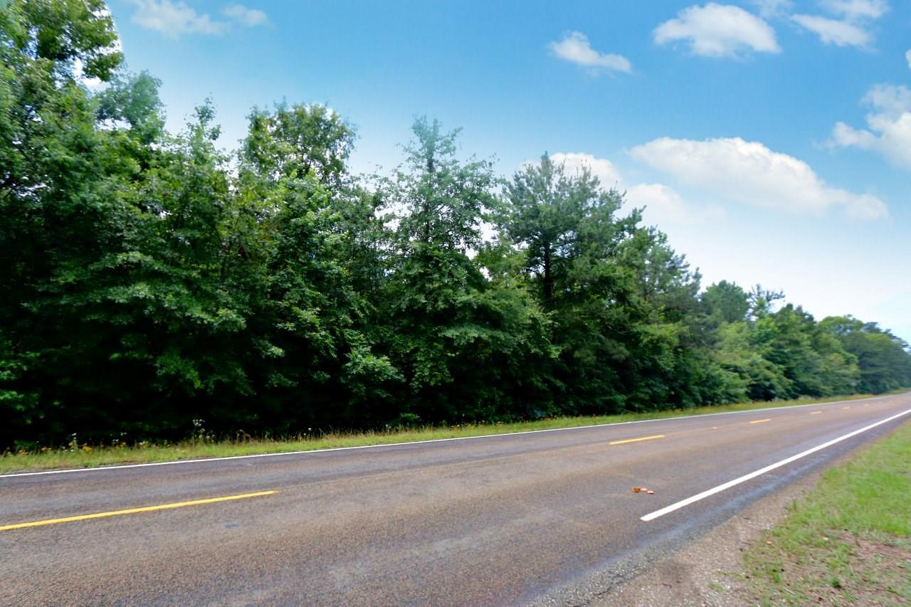 TBD Hwy 63 E Property Photo - Wiergate, TX real estate listing