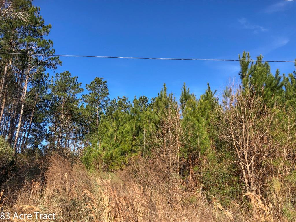 00 Farm to Market 2912 Property Photo - Groveton, TX real estate listing