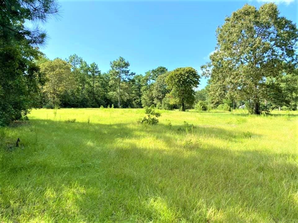484 Pr 8385 Property Photo - Hillister, TX real estate listing