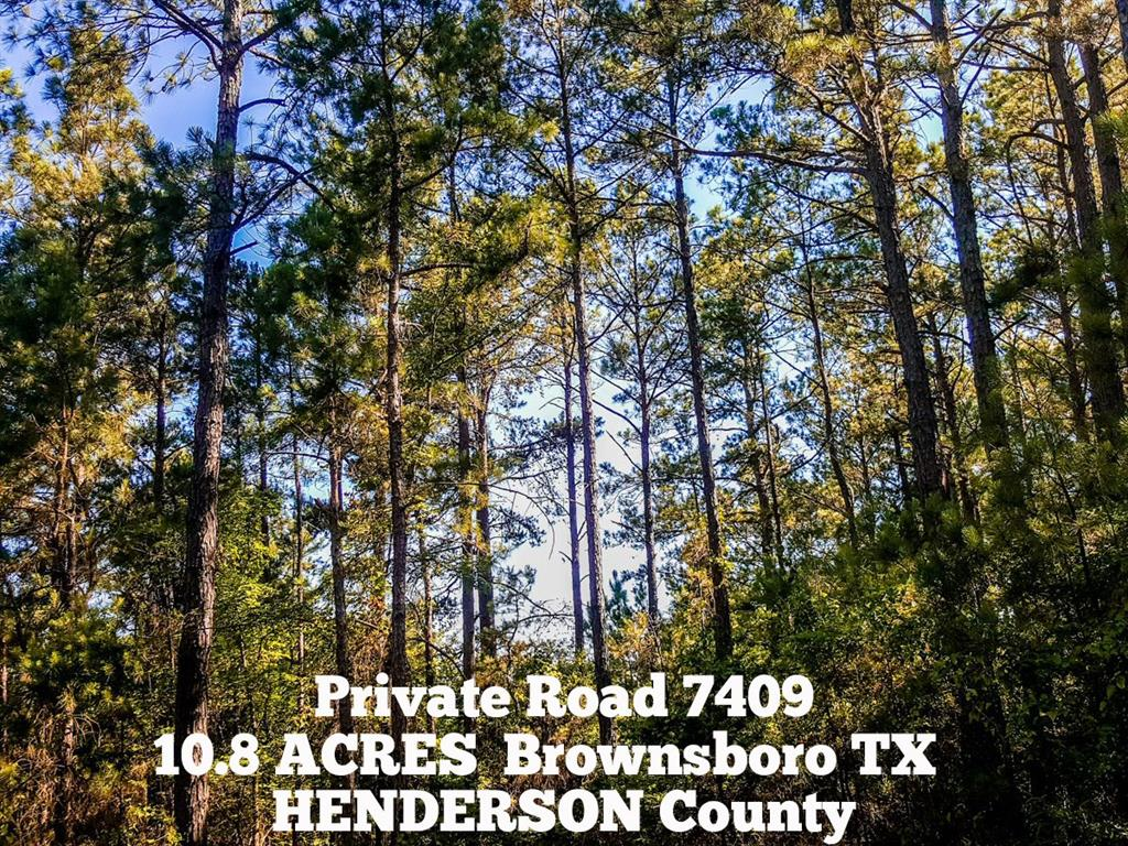 10.8-ac Pvt Rd 7409 - off County Road 3406, Brownsboro, TX 75756 - Brownsboro, TX real estate listing