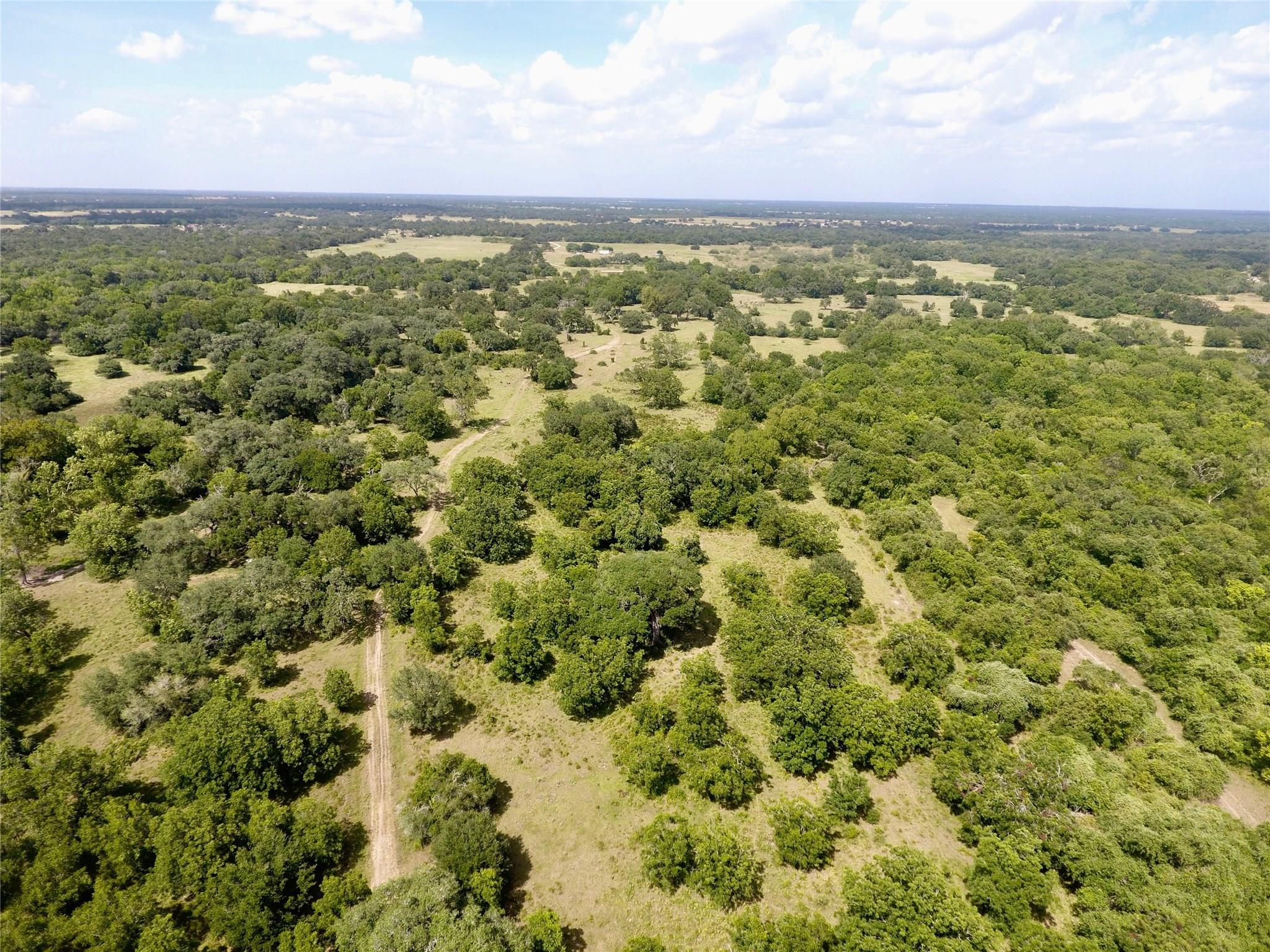 0 County Road 1H Property Photo - Hallettsville, TX real estate listing