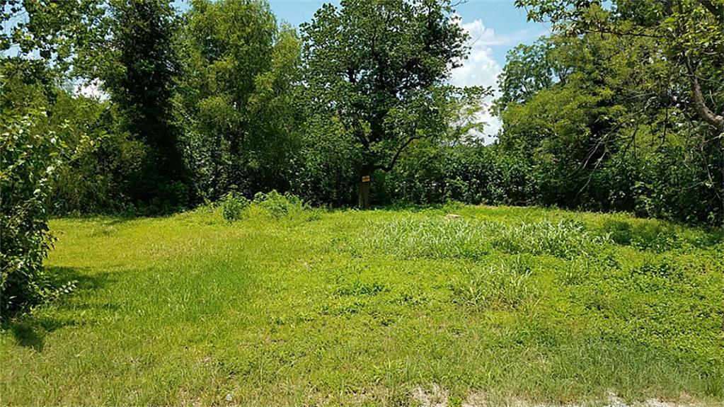 239 Amor Lane Property Photo - San Antonio, TX real estate listing
