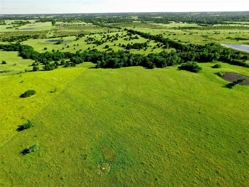 5176 Chadwick-Hogan Road Property Photo - Chappell Hill, TX real estate listing