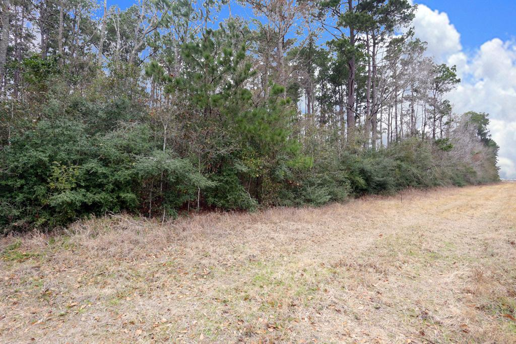 A0467 Reynolds George Tract 2 Property Photo - Magnolia, TX real estate listing