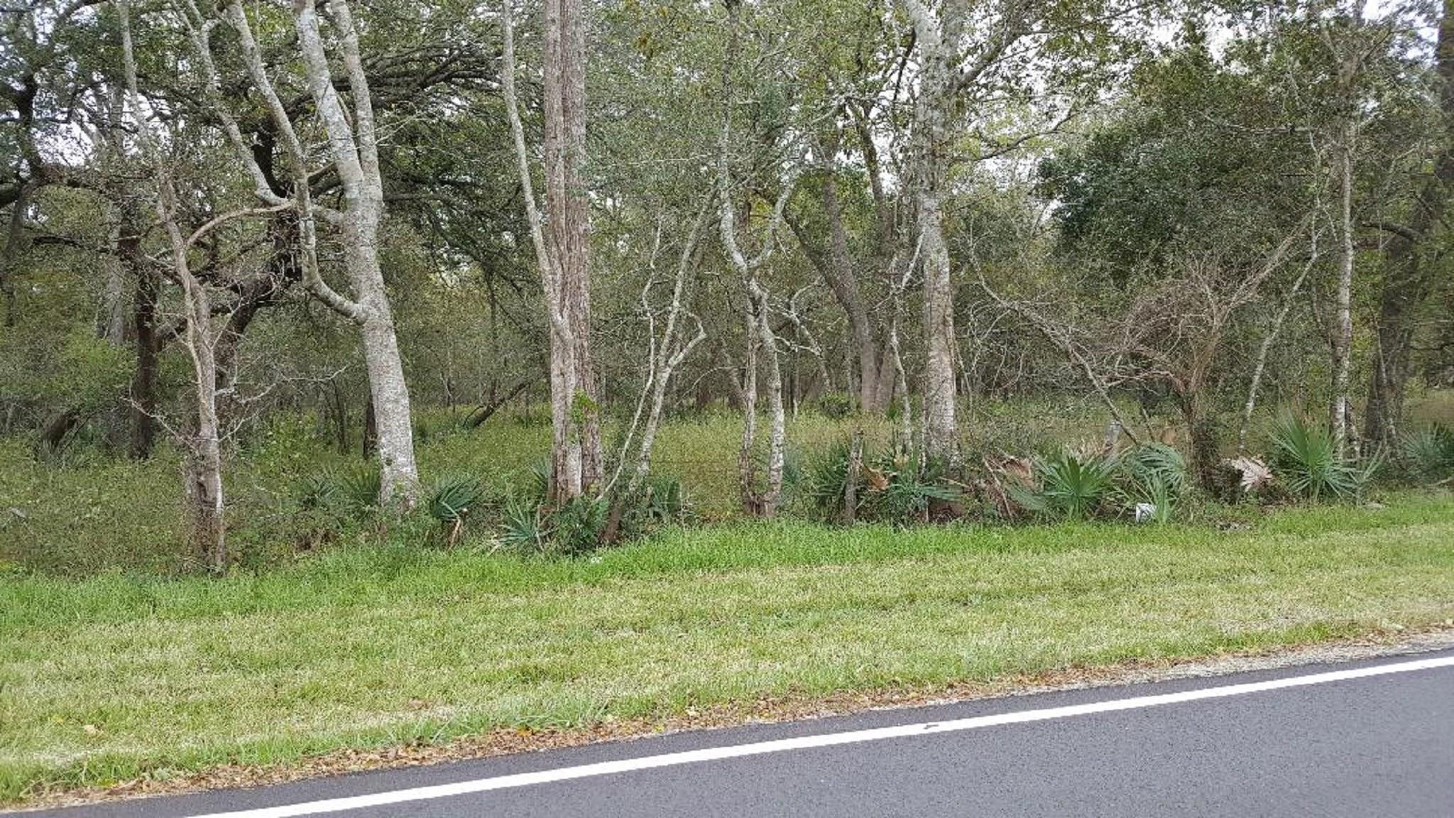 0 County Road 311 Property Photo